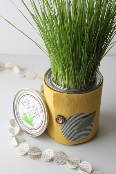 Spring In A Can