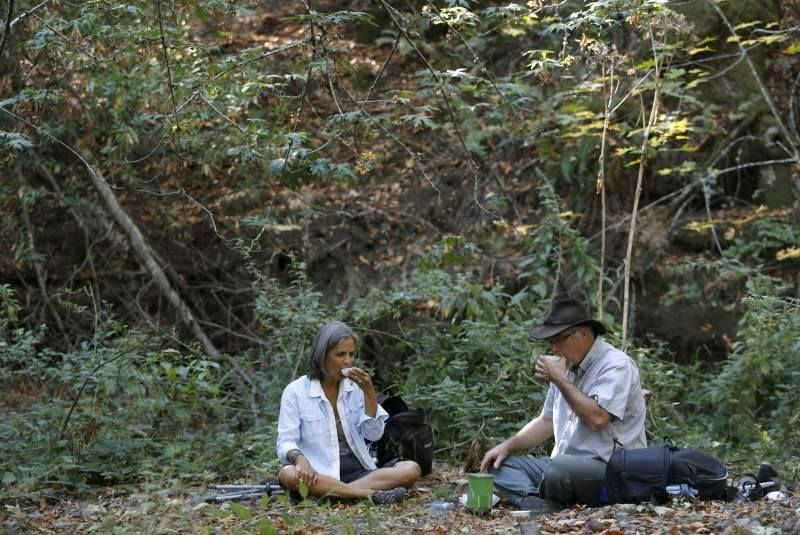 Drinking tea with Susan Karle. At the end of each walk we brew tea from plants foraged along the trail. We have a little tea ceremony to bring the walk to an end. It's often a time for discussion and reflection on the day's experience.