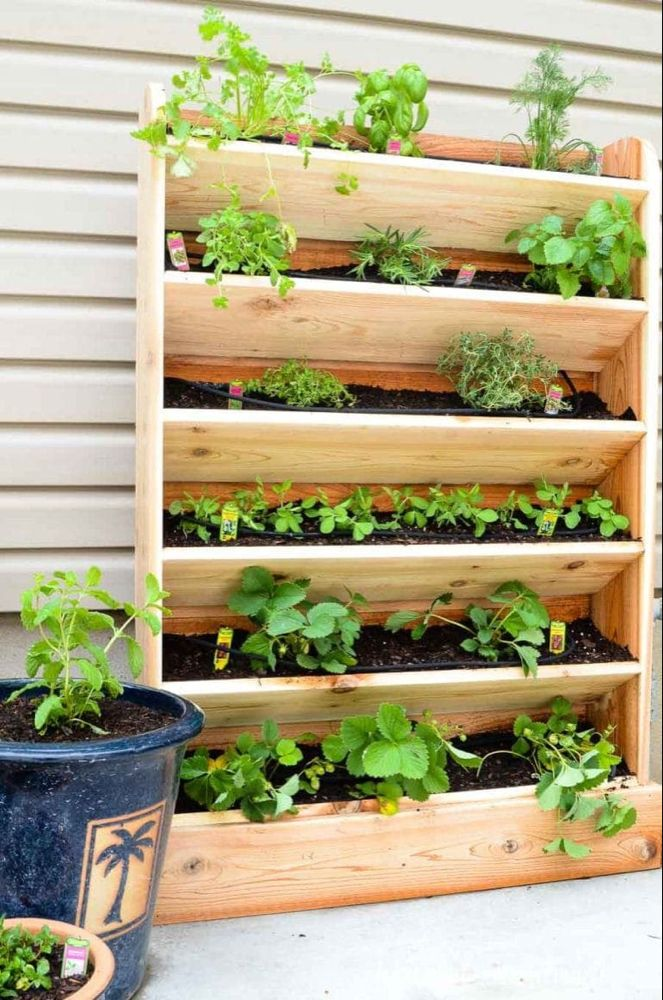 DIY Vertical Garden with Drip Watering System is part of Diy herb garden, Vertical garden diy, Vertical garden plants, Vertical garden design, Small backyard gardens, Herb garden design - Create a DIY vertical garden for the perfect small space garden solution  This cedar vertical garden has a lot of space to grow your favorite herbs and plants  And the built in drip watering system