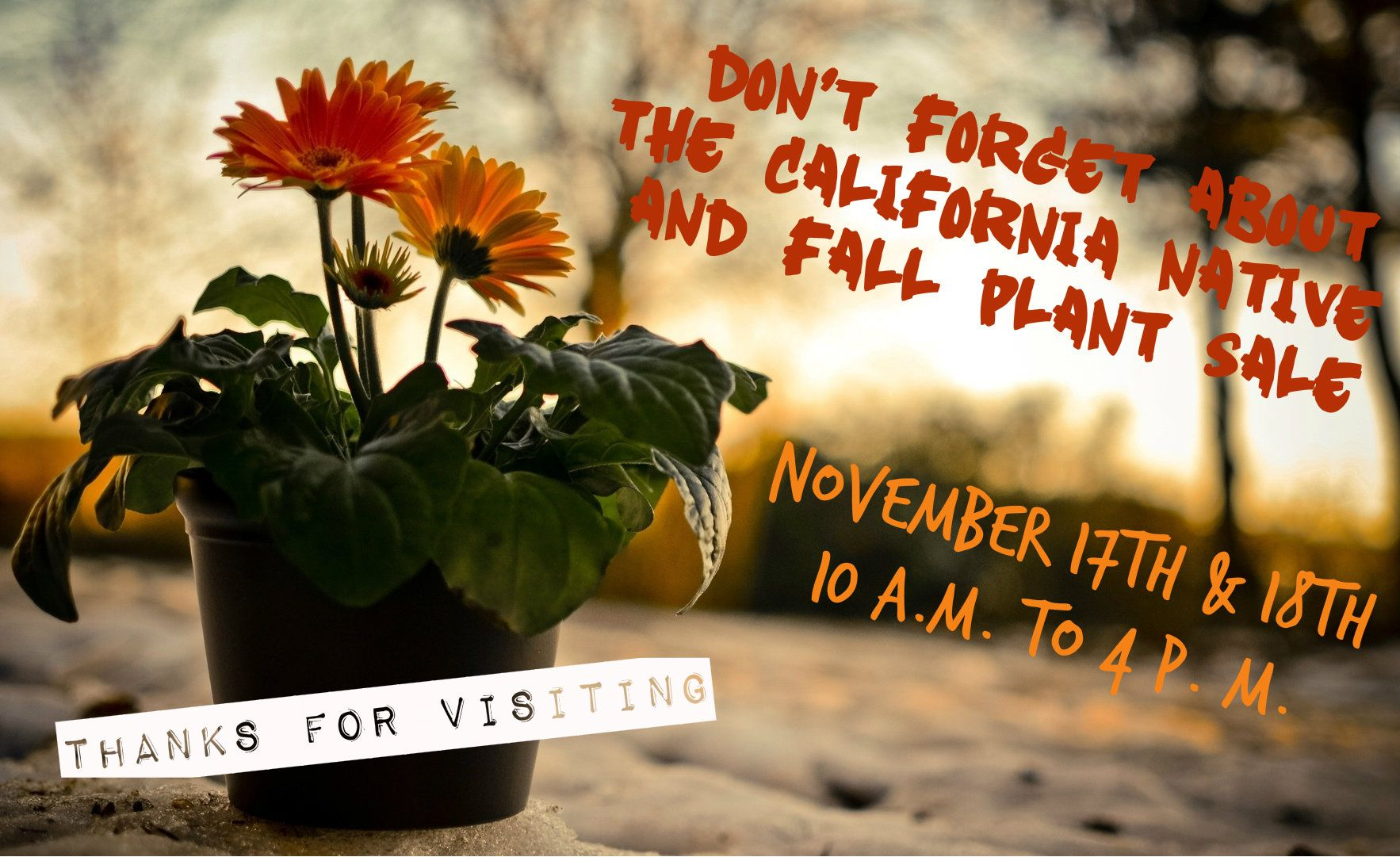california native plant sale u0026 fall expo this weekend at the