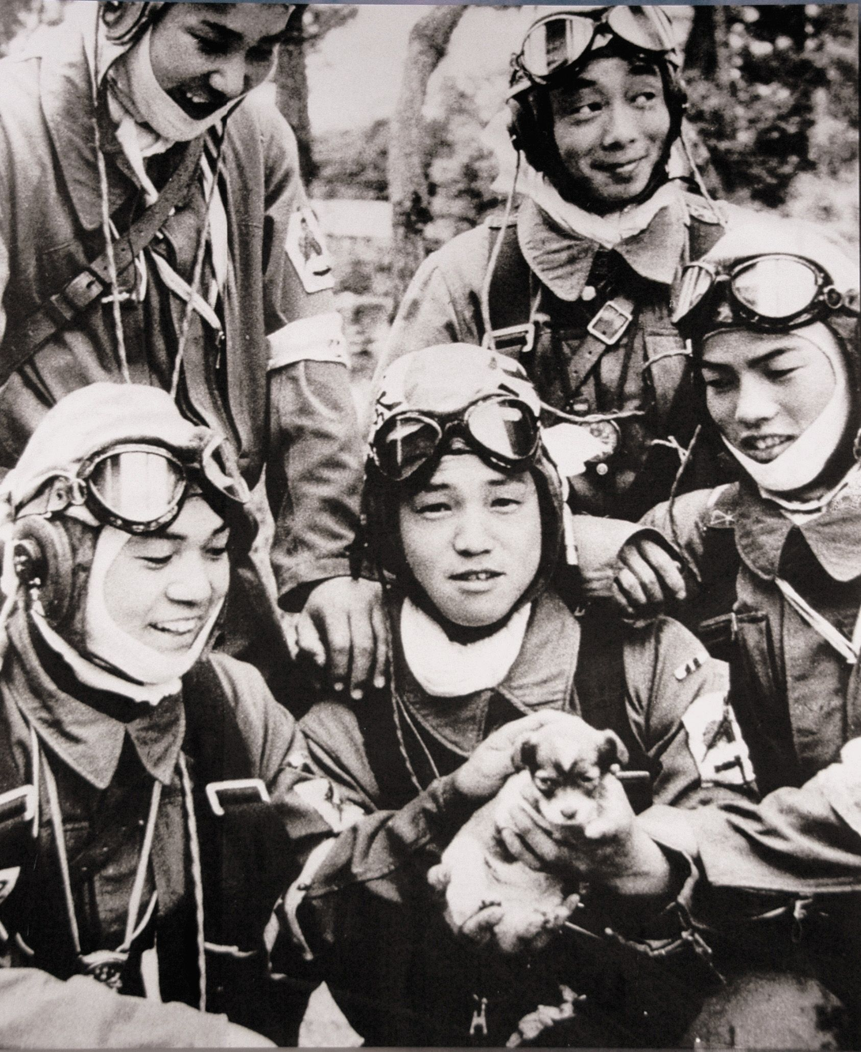 Corporal Yukio Araki holding a puppy, with four other pilots of the 72nd Shinbu Squadron at Bansei, Kagoshima (May 26, 1945). Araki died the following day in a suicide attack on ships near Okinawa.