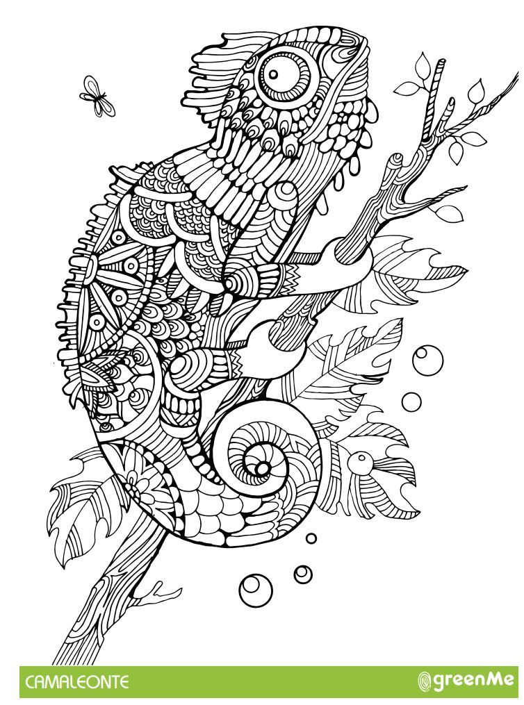 Mandala 15 Animali Da Colorare Scarica Gratis Animal Colouring