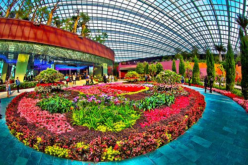 0f6cdcba8a8058f66dcfefbed8073f13 - Gardens By The Bay Flower Dome Hours