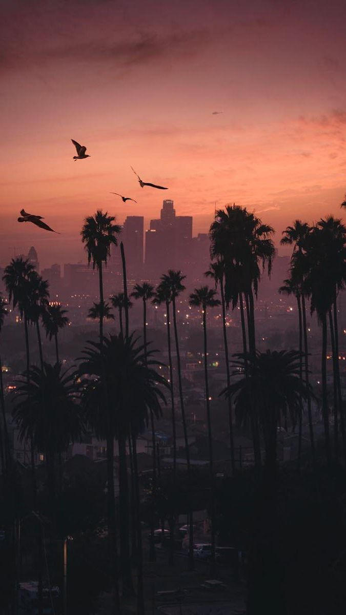 Sunset City Iphone Wallpaper City Iphone Wallpaper Sunset City Los Angeles Wallpaper