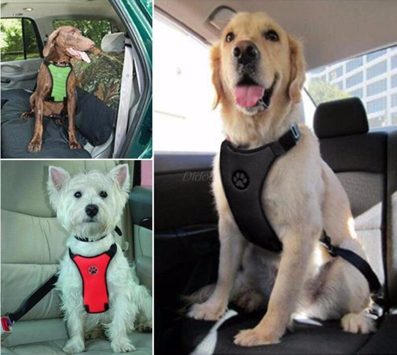 Dog Car Harness With Seat Belt Strap Awesome Baby Gear Dog