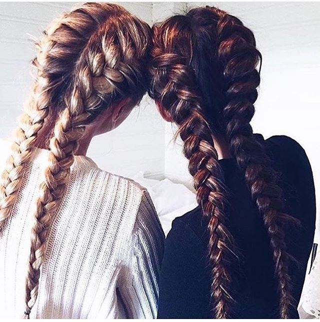 Captivating Two Braids