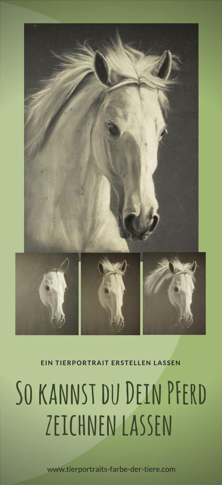 Tierportraits im Auftrag zeichnen lassen | Pferd nach Fotovorlage ...