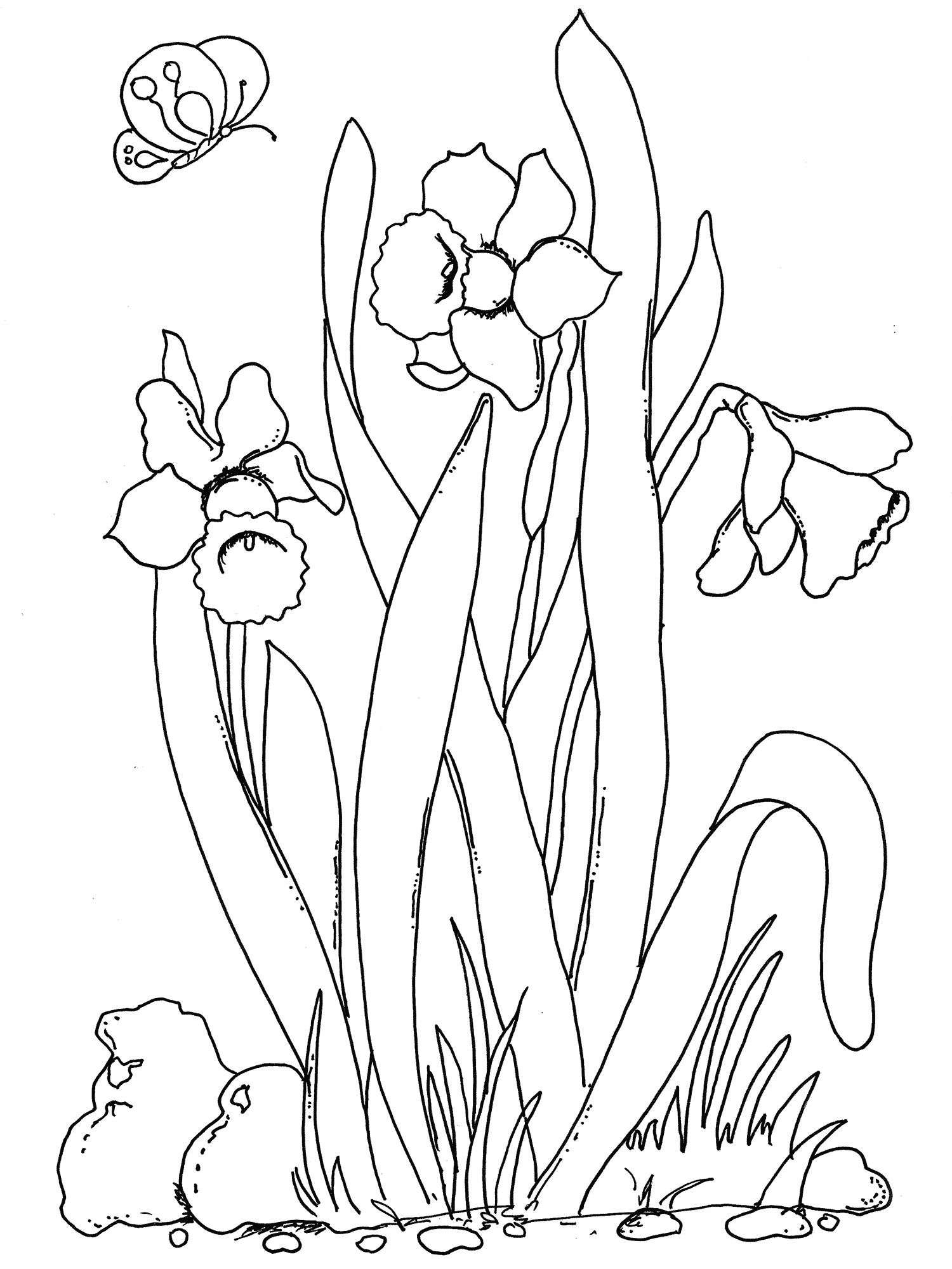 Beautiful Spring Flowers Coloring Pages by The