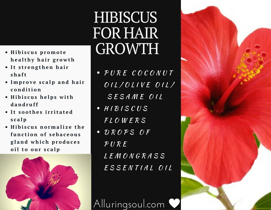 Hibiscus for hair remedies for hair regrowth strong and shiny hair loss and hair related problems are common condition and effect most people at some time at their lives its true that men are more likely to lose izmirmasajfo