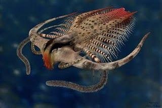 Life Before The Dinosaurs Prehistoric Animals Prehistoric Creatures Extinct Animals