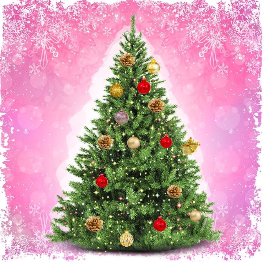 Decorate Your Christmas Tree! More games at GirlsGoGames