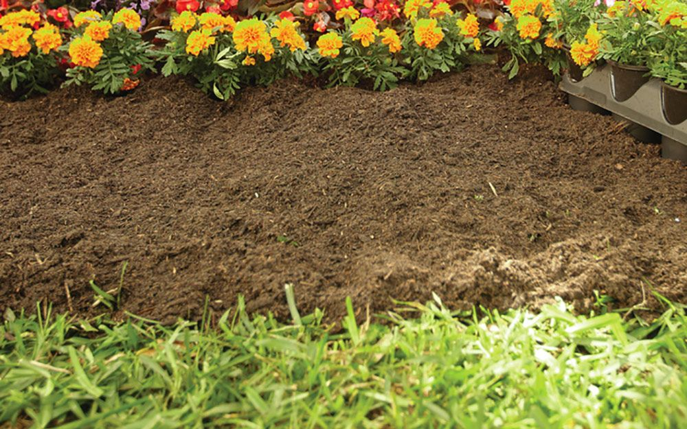 Prepare garden bed How To Plant Flowers (With images