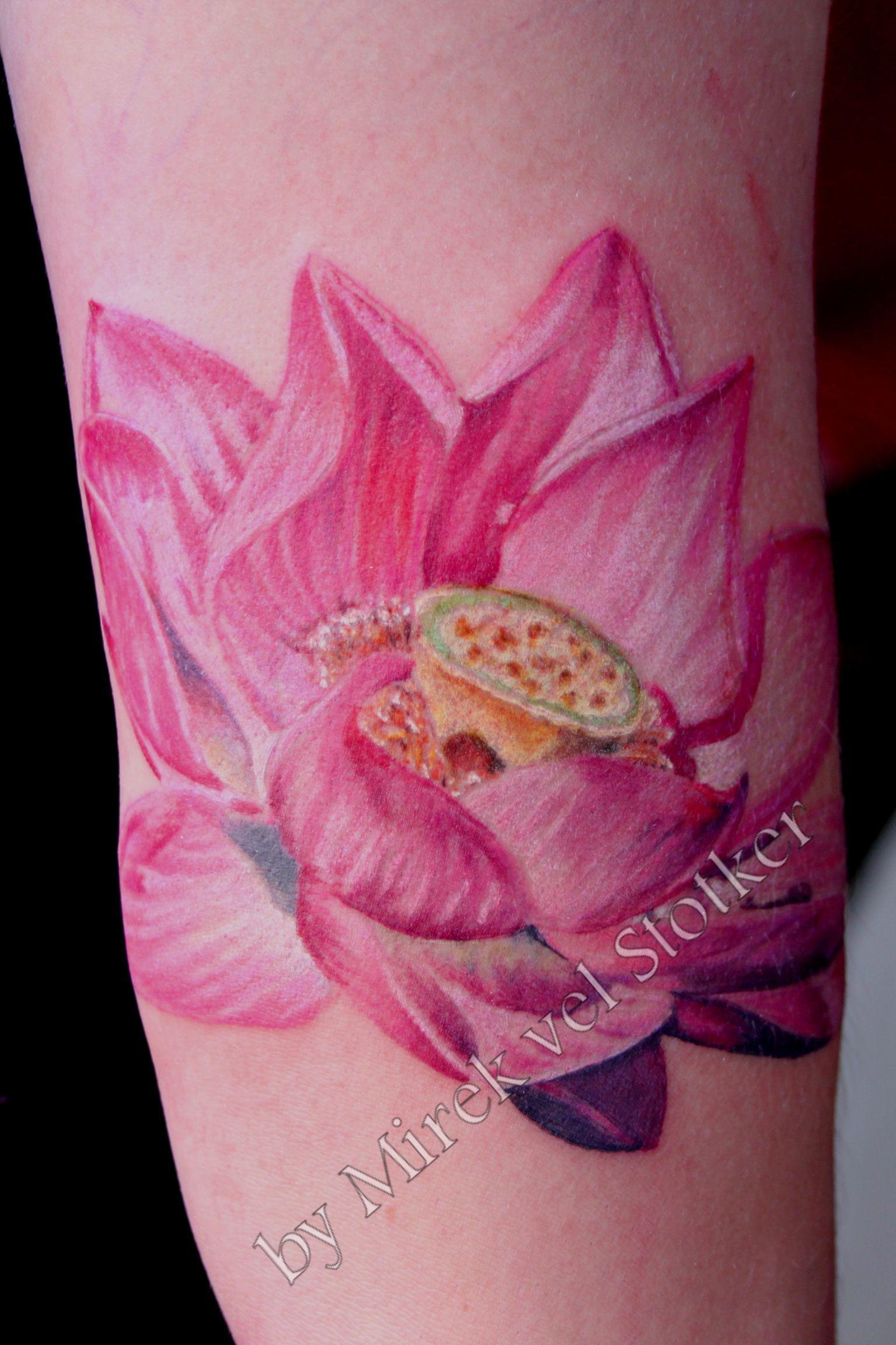 Pink Lotus Flower Tattoo By Mirek Vel Stotker Inktopia Pinterest