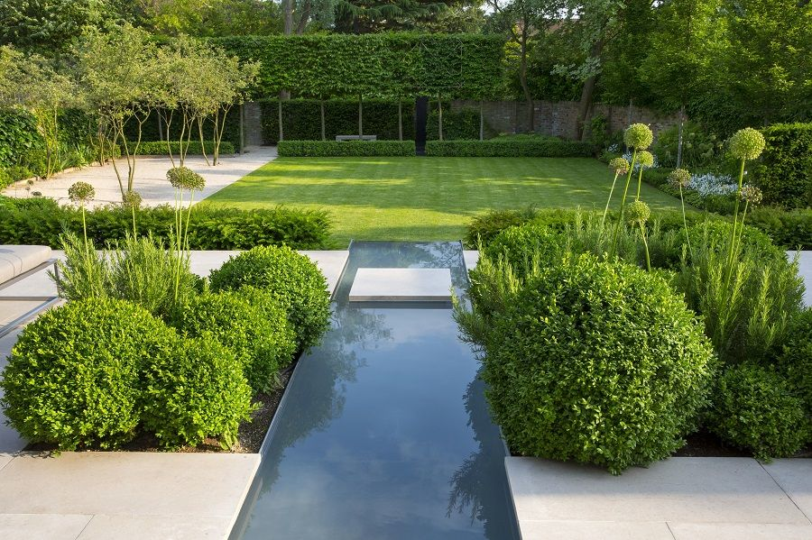 Pleached head reflecting hedge and pavers echo shape of for Paisajismo estanques