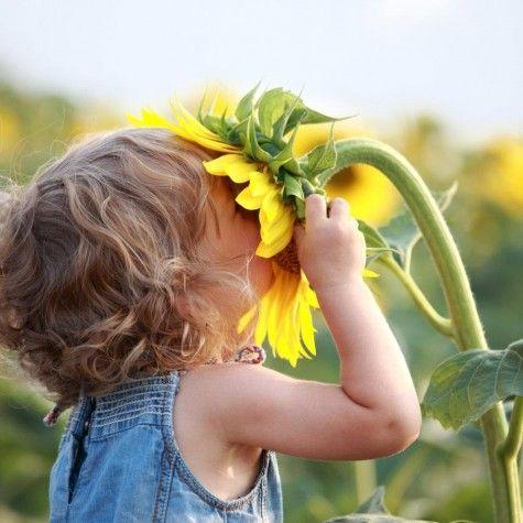 Sunflowersmooch!