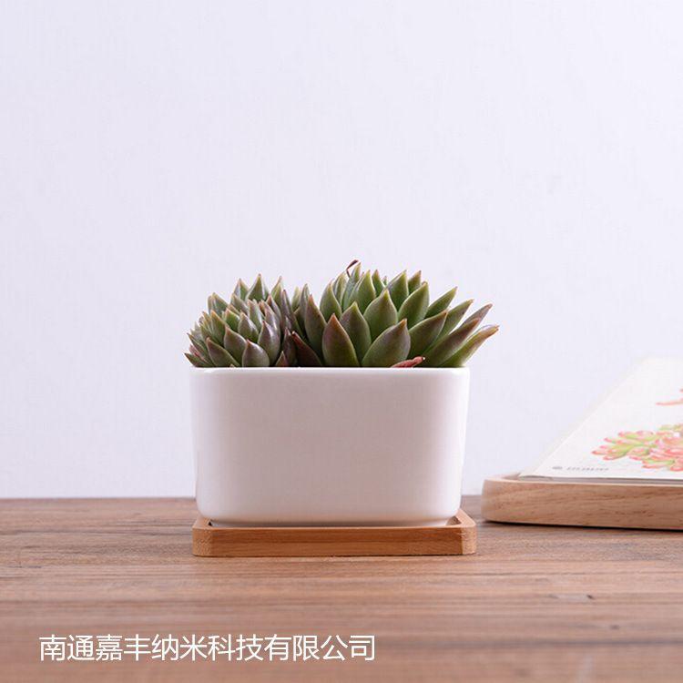 small white plant pots