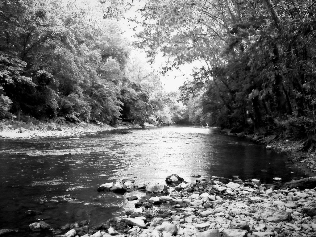 black and white river drawing - Google Search | Days in november ...