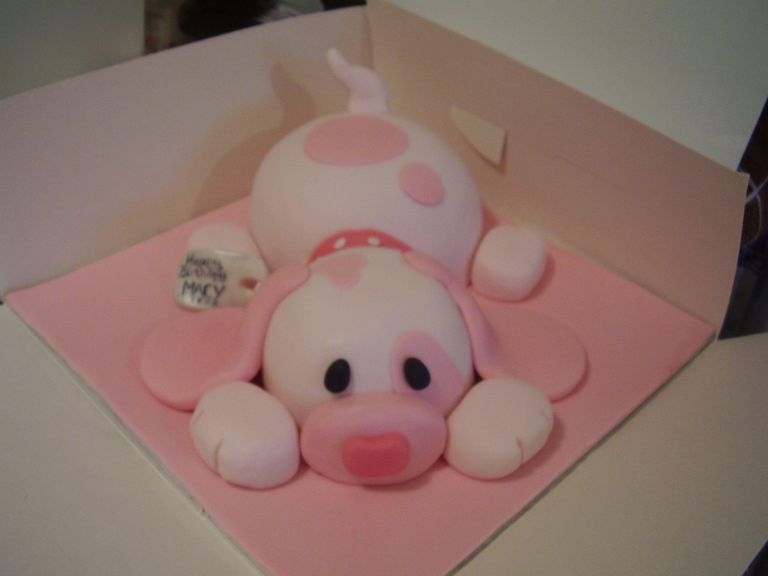 Puppy cake d my first puppy cake flor pinterest puppy cake