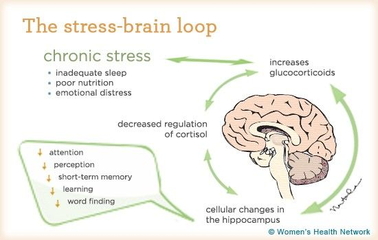 Why Stress Affects Our Brain Size  How To Lower Stress  Reduce