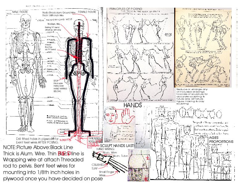 This Amazing Diagram Show Not Only Body Proportions But Where To