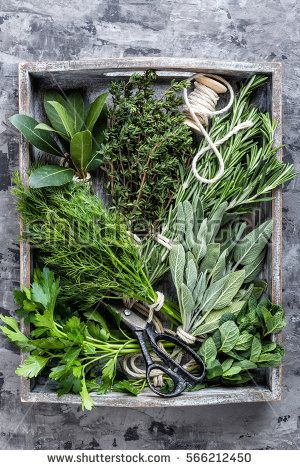 fresh herbs in wooden box on stone background
