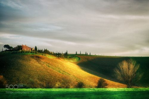 Presso La Sterza by PaoloDeri  grass Nature Landscape Trees Green Toscana Italy Landscapes Sky Italia Italian Clouds House Hill Tus