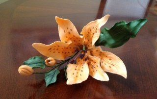 {Interesting orange Tiger Lily by Lena Bender}