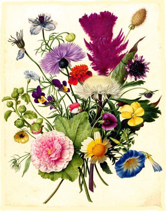 Antique French Botanical Print Bouquet Of Flowers Roses Etsy Vintage Botanical Prints Botanical Prints Botanical Illustration