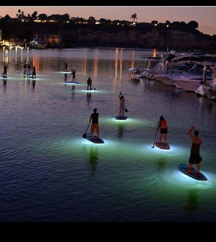 Paddle Boards Newport Beach California