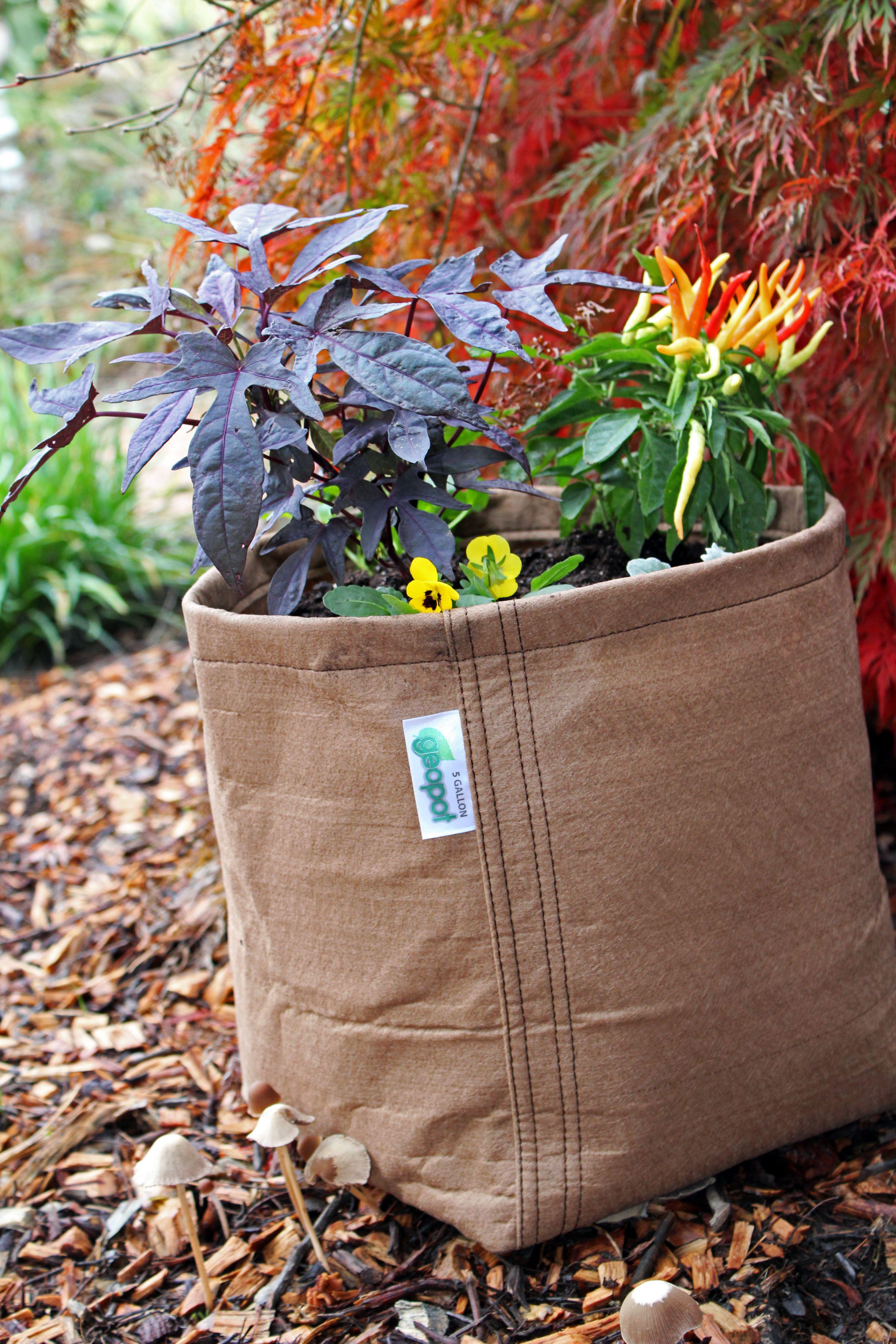 Fabric Gardening Pot (Tan) | Pinterest | Urban gardening and Plants