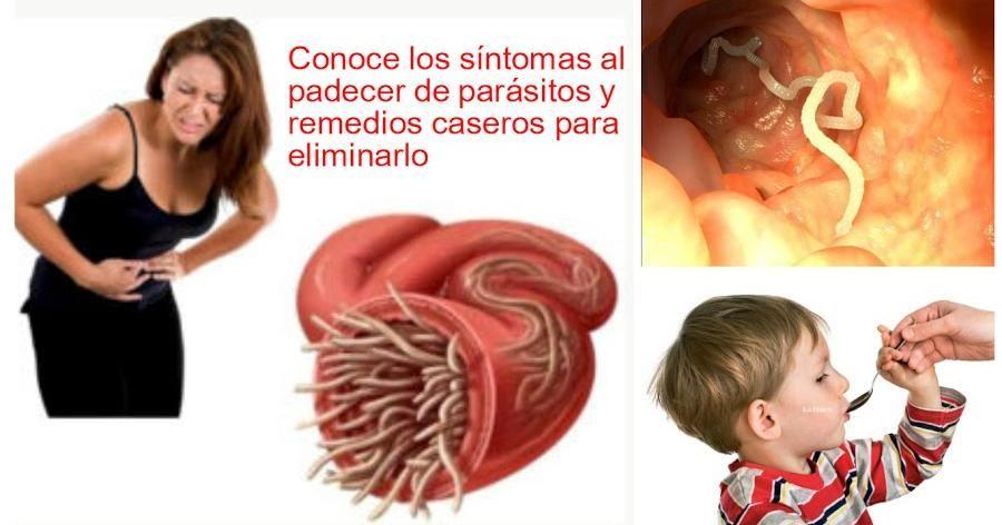 síntomas de parásitos y remedios caseros efectivos