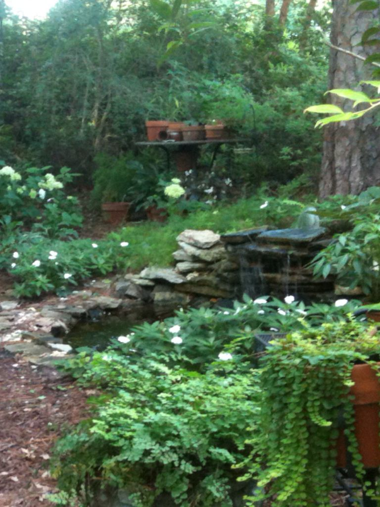 Water Feature In Woodland Garden Woodland Garden Water Features Outdoor Decor
