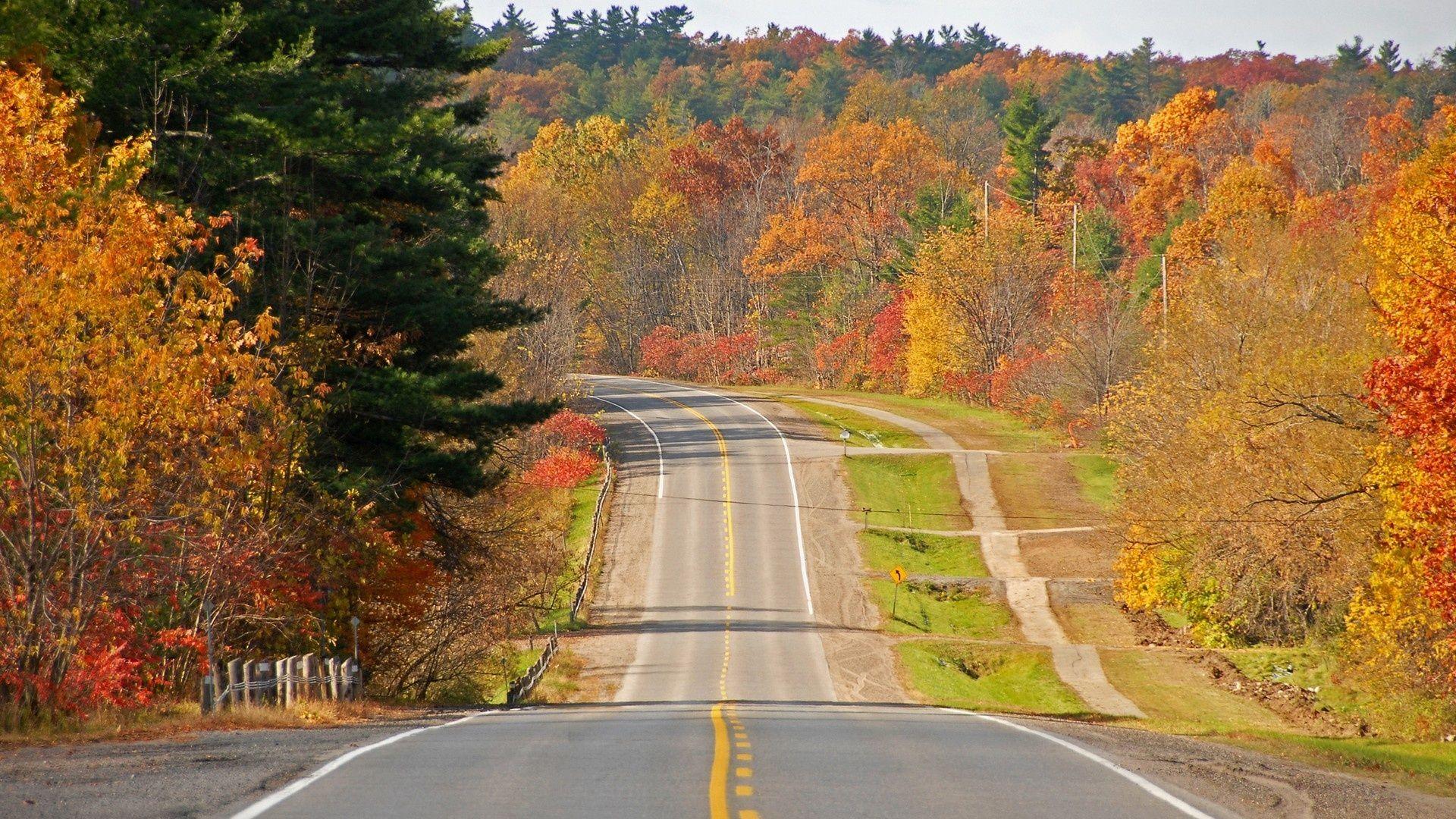 1920x1080 Beautiful Road Ahead Hd Wallpapers 1080p Beautiful Roads Landscape Wallpaper Nature Wallpaper