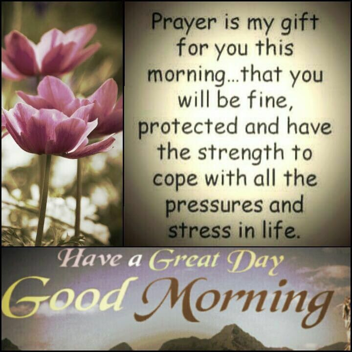 Good Morning Quotes Blessings: Good Morning Quotes