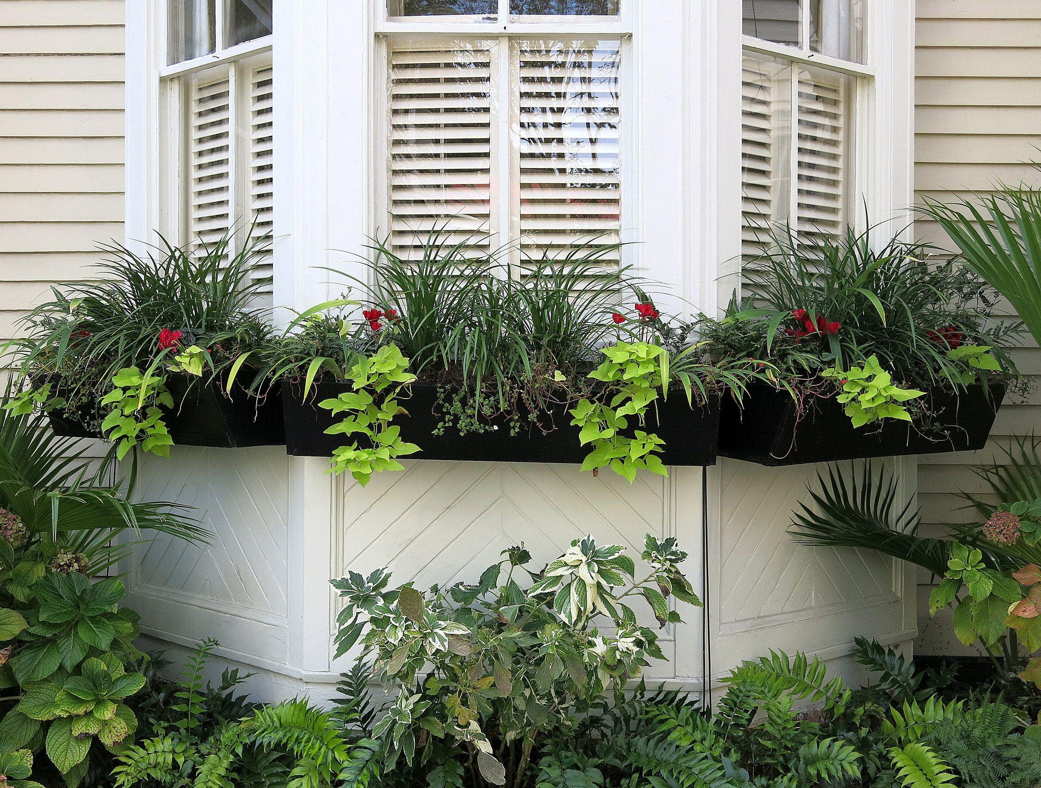 Bay window with window boxes, Charleston, SC   Window garden ideas ...