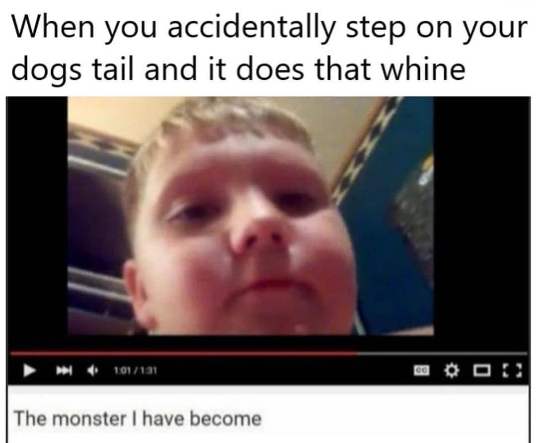 Friend Memes Puppie Memes Fuuny Memes Running Memes Funny School Memes Doggo Meme Yassssss Meme How Memes C Really Funny Memes Really Funny Funny Memes