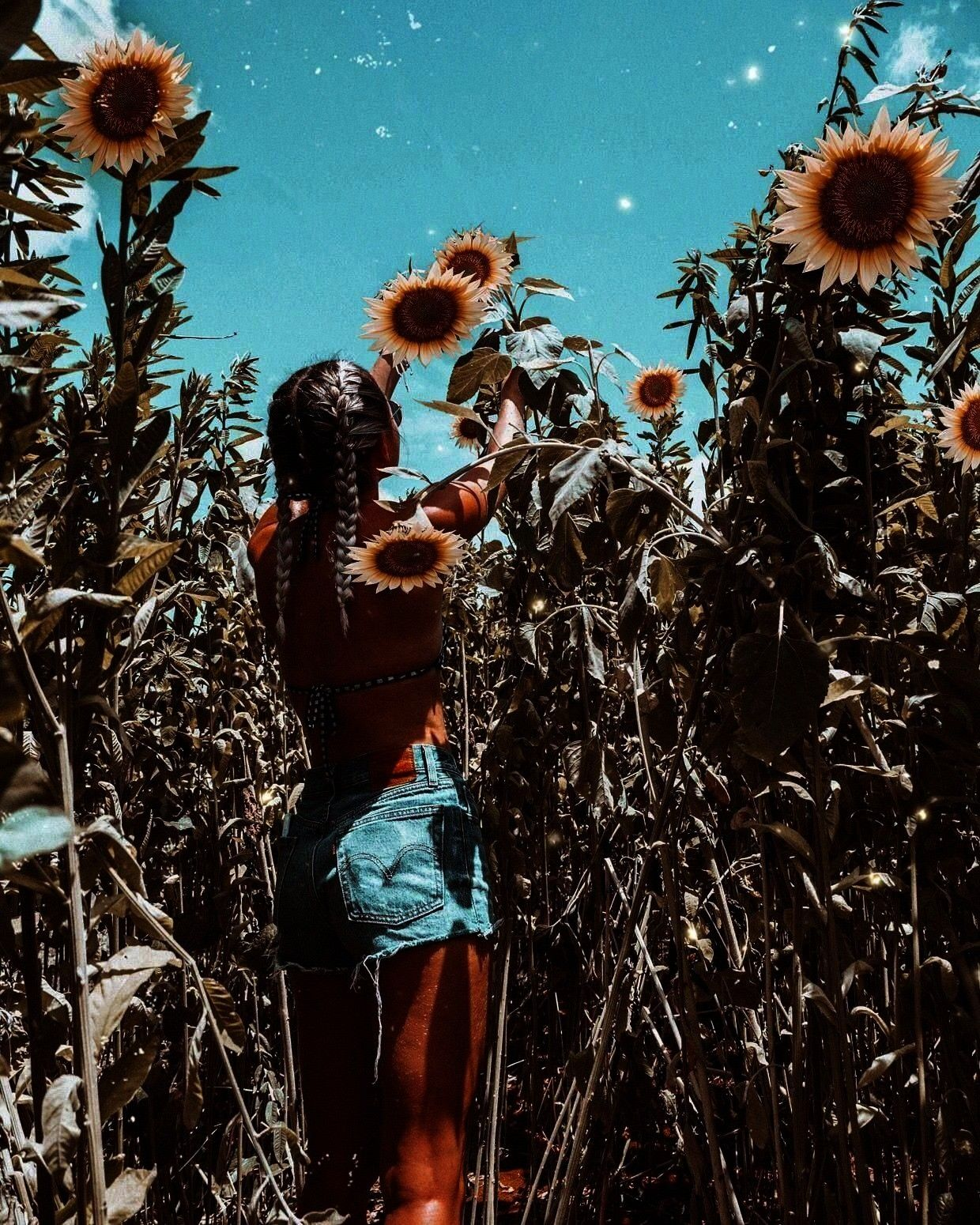Summer aesthetic summer inspo swimwear fashion sunflowers sunflower field The Effective Pictures We Offer You About summer outif A quality picture can tell you many thing...