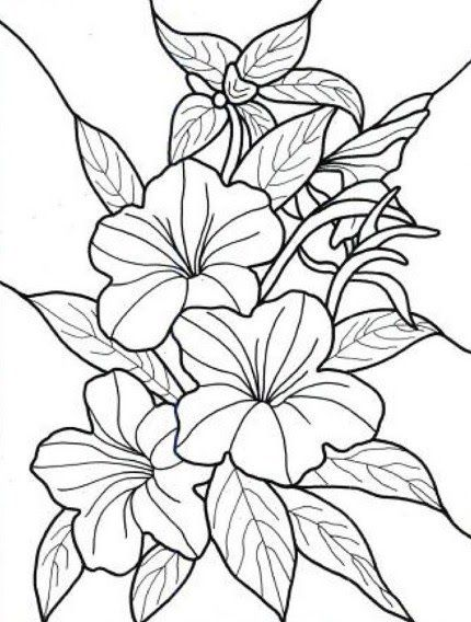 Lukisan Bunga Hitam Putih 3d
