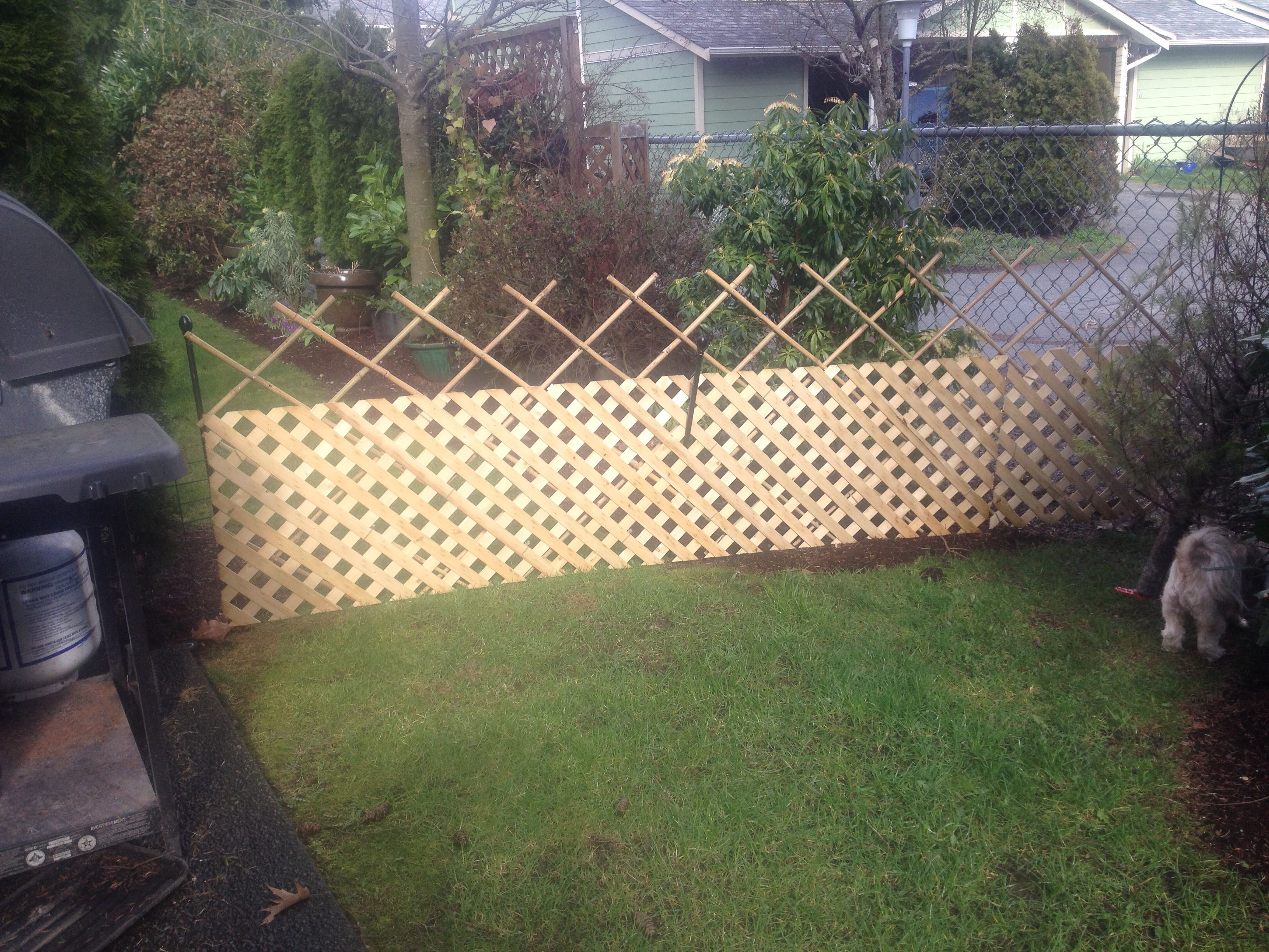 Temporary Bamboo Fence With Trellis Support Home