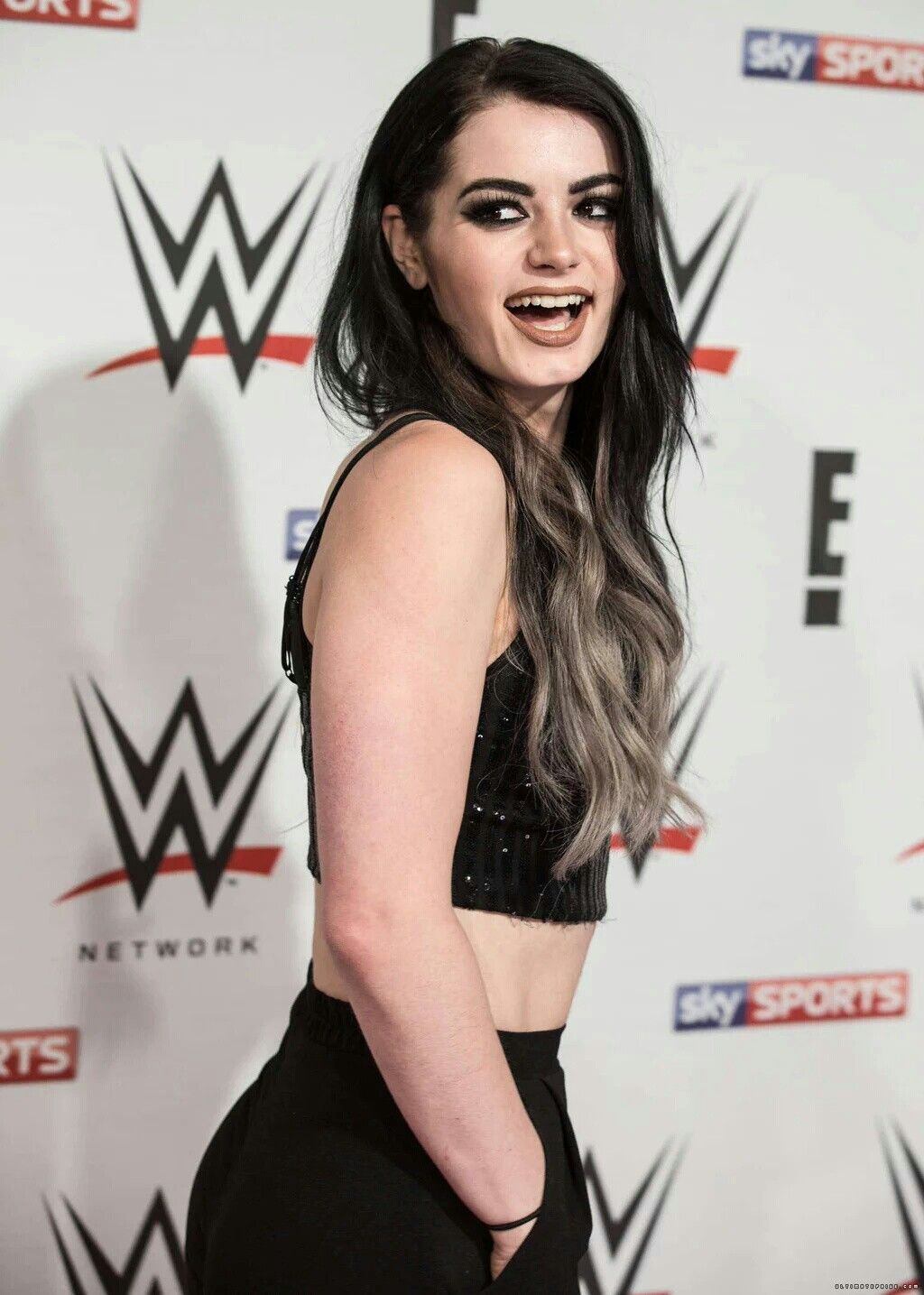 Pin by evelyn barrientez on wwe women pinterest paige wwe and wrestling wwe - Diva paige sex tape ...