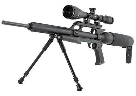 Air Rifle Woodchuck Hunting