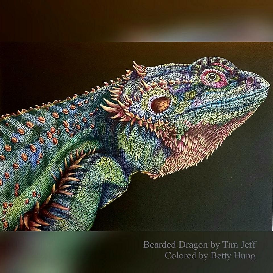 Bearded Dragon by Betty Hung | animales color | Pinterest