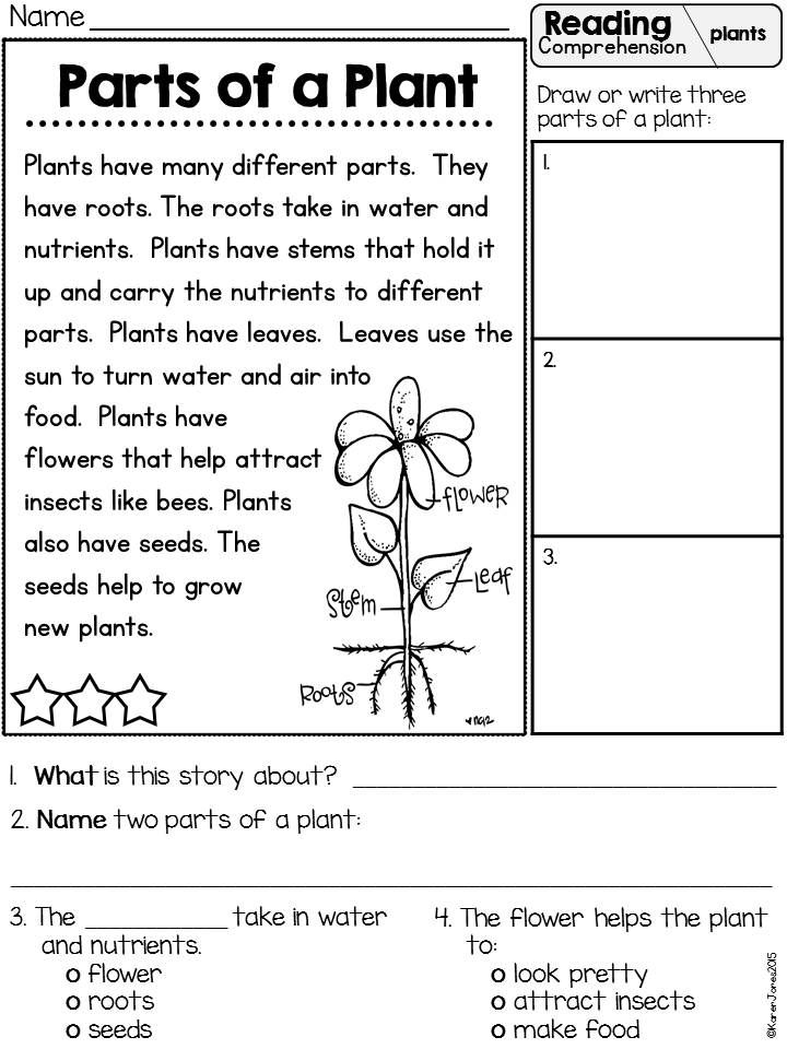 Primarily Plants Unit For K 1 Two Week Science Math And Literacy Unit With Reading Comprehension Lessons Reading Comprehension Reading Comprehension For Kids