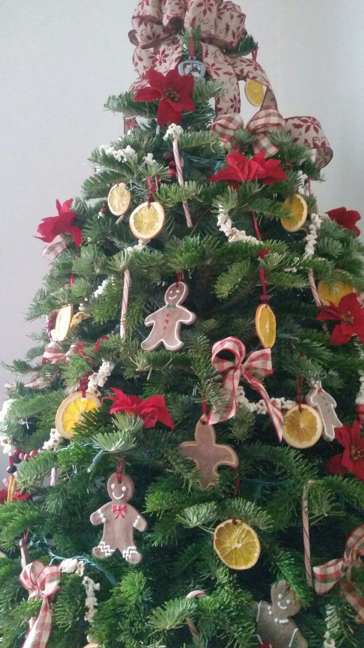 Our 1st Christmas Tree Together Salt Dough Ornaments Dried Oranges Popcorn Cran Homemade Christmas Tree Christmas Tree Decorations Diy Orange Christmas Tree