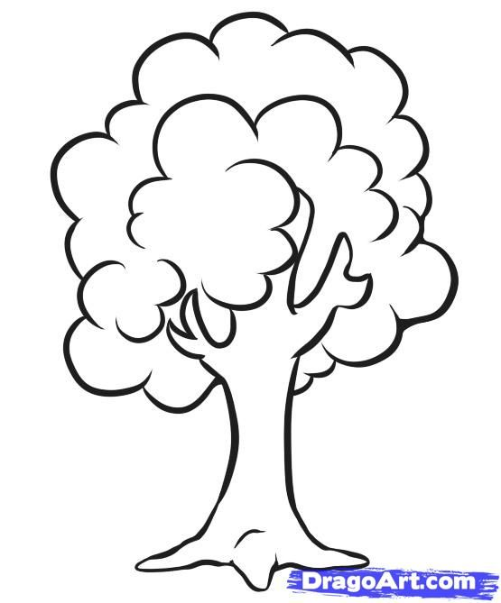 How To Draw A Simple Tree Step 5_1_000000024405_5 (555×669)