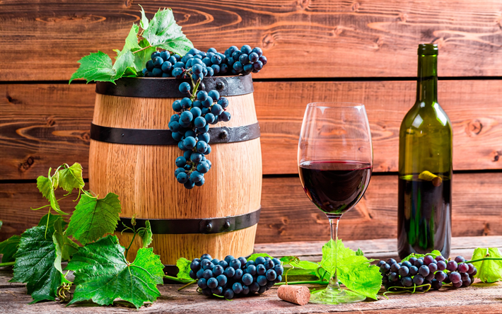 Lataa kuva viini, viinirypäleet, tynnyri viiniä, hedelmät, sato, viinikellari