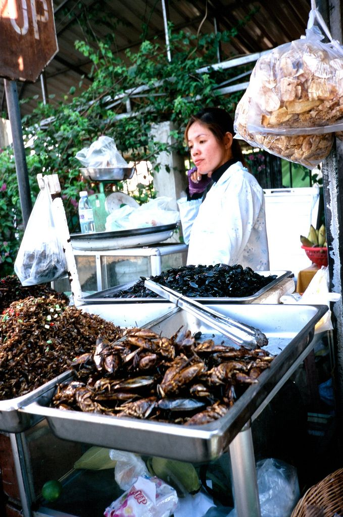 Siem Reap Street Food ... are those insects?