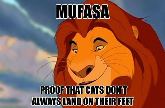 The Feels Lion King Funny Disney Jokes Lion King Meme