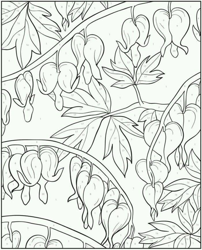 单线稿 来自红秀的图片分享 堆糖 Coloring Books Coloring Pages Adult Coloring Pages