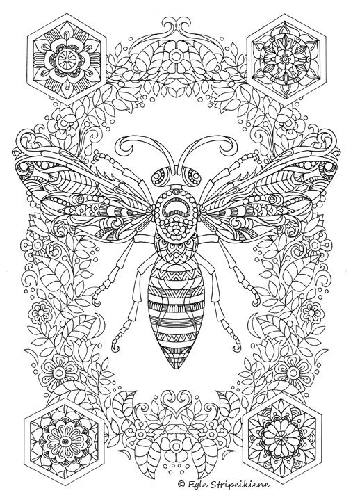 A3 Coloring Pages Colors Of Life Insect Coloring Pages Bee Coloring Pages Mandala Coloring Pages